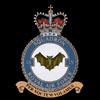 RAF 9Sqn emblem