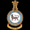 emblem RIAF 1Sqn emblem