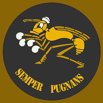 emblem RAF No 3 Squadron