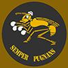 SAAF No 3 emblem
