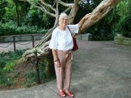 Asisbiz Singapore Botanical Gardens Nov 2004 01