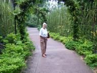 Asisbiz Singapore Botanical Gardens Nov 2004 05