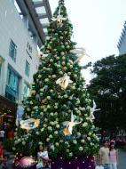 Asisbiz Singapore Orchard Street during Christmas 2004 06