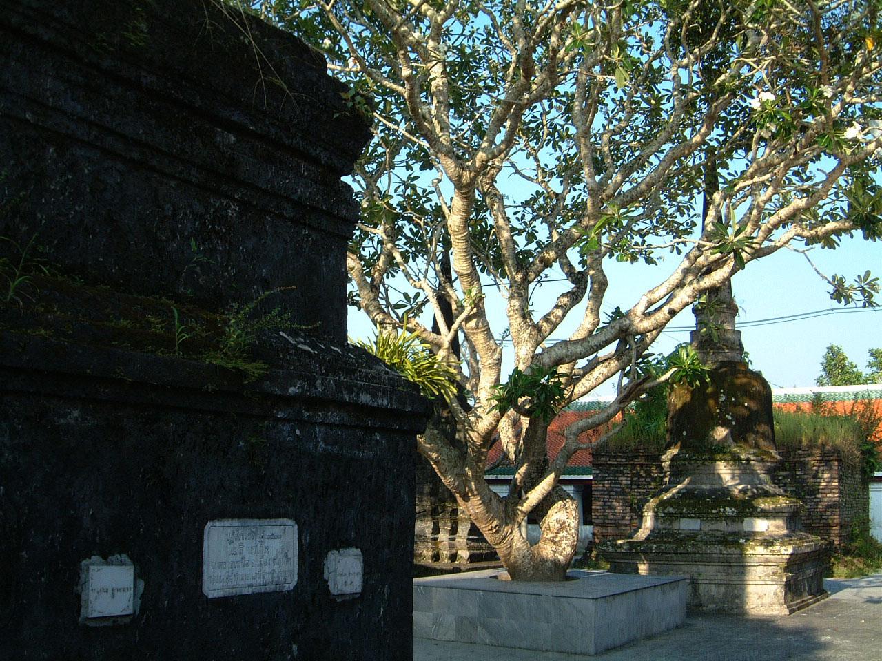 Wat Phra Baromathat Nakhon Srithammarat Apr 2001 33