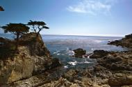 Asisbiz HDR effect Lonely Cypress Tree 17 Mile Drive Monterey California July 2011 01
