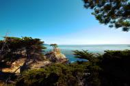 Asisbiz HDR effect Lonely Cypress Tree 17 Mile Drive Monterey California July 2011 02