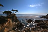 Asisbiz HDR effect Lonely Cypress Tree 17 Mile Drive Monterey California July 2011 03