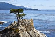 Asisbiz The Lonely Cypress Tree 17 Mile Drive Monterey California July 2011 06