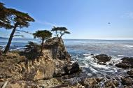 Asisbiz The Lonely Cypress Tree 17 Mile Drive Monterey California July 2011 14