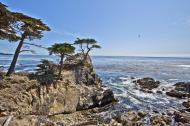 Asisbiz The Lonely Cypress Tree 17 Mile Drive Monterey California July 2011 15