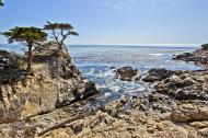 Asisbiz The Lonely Cypress Tree 17 Mile Drive Monterey California July 2011 20