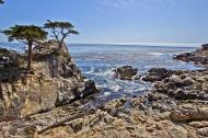 Asisbiz The Lonely Cypress Tree 17 Mile Drive Monterey California July 2011 22