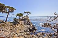 Asisbiz The Lonely Cypress Tree 17 Mile Drive Monterey California July 2011 26