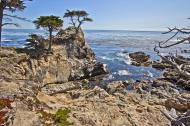 Asisbiz The Lonely Cypress Tree 17 Mile Drive Monterey California July 2011 27