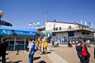 Asisbiz Fishermans Wharf Pier 39 entrance Aqarium on the Bay San Francisco Bay area CA 01