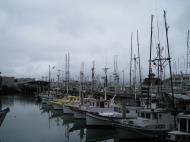 Asisbiz Fishermans Wharf Pier 39 marina San Francisco Bay area CA 05