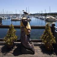 Asisbiz Old Fishermans Grotto Wharf and Marina Monterey Bay California July 2011 04