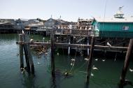 Asisbiz Old Fishermans Grotto Wharf restaurants viewd from the Marina Monterey CA 04
