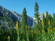 Asisbiz Yosemite National Park Yosemite CA 95389 0577 Aug 2004 05