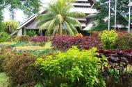 Asisbiz Espiritu Santo Vanuatu 11