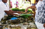 Asisbiz Local food market Espiritu Santo Vanuatu 03