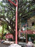 Asisbiz HCMC Phuoc Hai Jade Emperor Pagoda District 3 Nov 2009 03