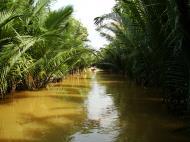 Asisbiz Mekong Delta Saigon River cruise 4th stage canoe Nov 2009 14