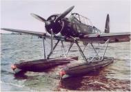 Asisbiz Color photo showing the front profile view of a Arado Ar 196 moored close to shore 01