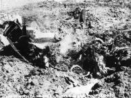 Asisbiz USAAF 41 17988 B 26B Marauder 322BG452BS DRR crashed near home base 14 May 1943 05