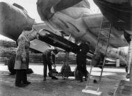 Asisbiz Beaufighter X RCAF 441Sqn 9GC being rearmed with a torpedo IWM CH9768