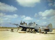 Asisbiz Beaufighter VIF RAF 252Sqn White N at Tunisia Jun 1943 IWM TR816