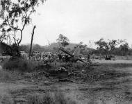 Asisbiz RAAF Bristol Beaufighter destroyed after Japanese raid Jacksons drome Port Moresby 1943