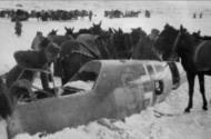 Asisbiz Bf 109E 1.JG77 Yellow 9 used by Hugo Dahmer belly landed Titowka btw 24th n 30th Jul 1941 04