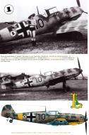 Asisbiz Messerschmitt Bf 109E4B 2.(J)LG2 Black 10 WNr 2060 Tudora Botosani Romania Jun 1941 Avions 190 P26