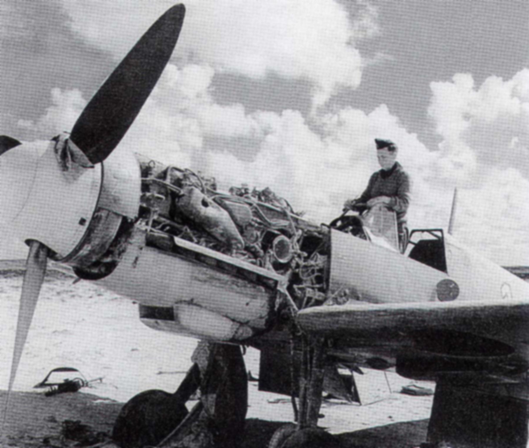 Messerschmitt Bf 109F4Trop 1.JG27 White 1 captured North Africa Nov 1942 01