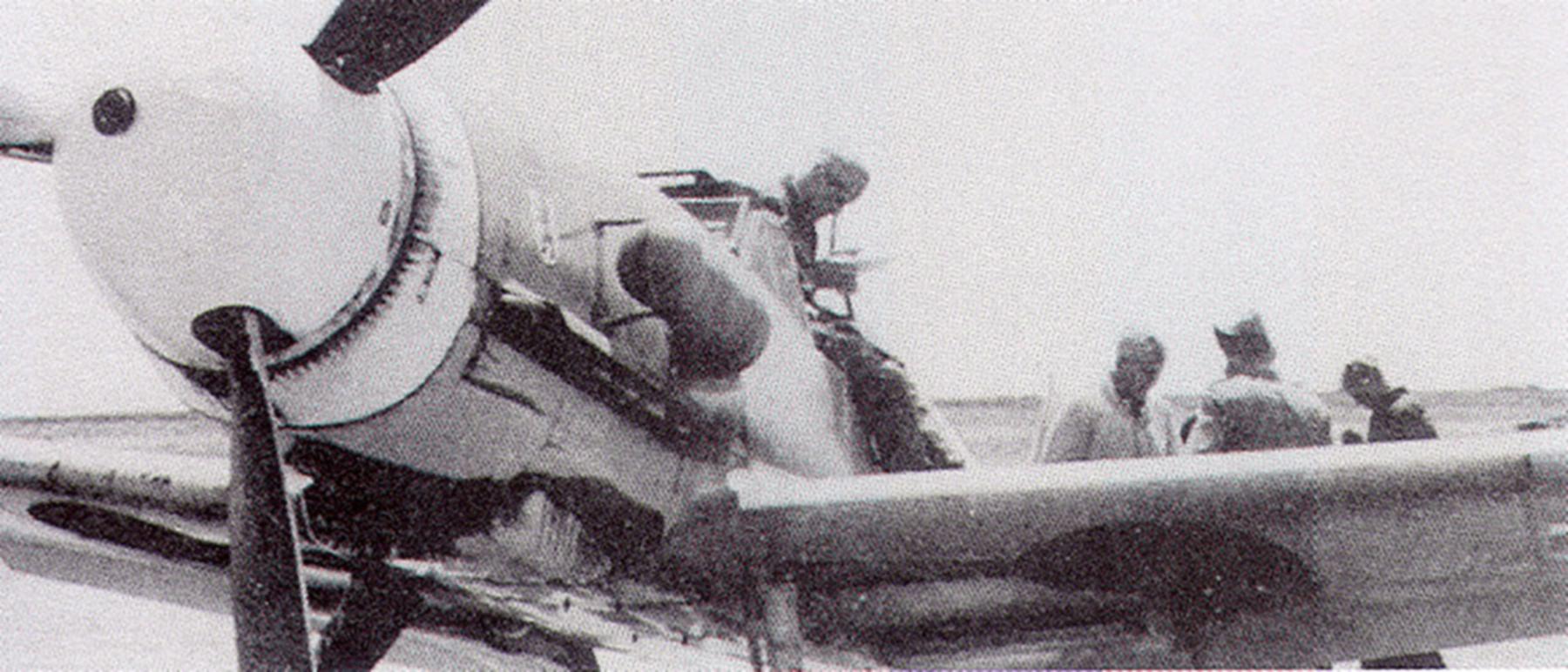 Messerschmitt Bf 109F4Trop 5.JG27 Black 4 Martuba Libya Feb 1942 04