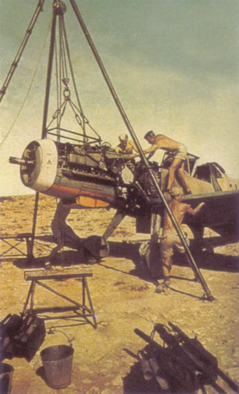 Messerschmitt Bf 109F4Trop JG27 North Africa 1942 02