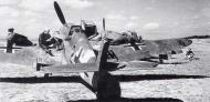 Asisbiz Messerschmitt Bf 109G2Trop 5.JG53 (B2+ ) Herbert Rollwage La Marsa Tunisia 1942 01
