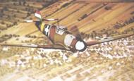 Asisbiz Messerschmitt Bf 109F4 RHAF experimental camouflage scheme 01