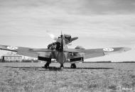 Asisbiz Messerschmitt Bf 109G2 FAF HLeLv34 MT2xx Utin 24th Apr 1943 11
