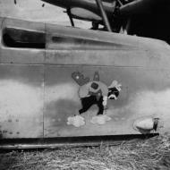 Asisbiz Messerschmitt Bf 109G JG11 emblem NIOD