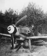 Asisbiz Messerschmitt Bf 109G14ASR3 Erla 7.JG11 Theo Nau Yellow 18 Dec 1944 02