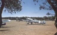 Asisbiz Messerschmitt Bf 109G4R6 RA 150Gr365Sqn White 365 1 WNr 19566 Sicily Italy 1943 01
