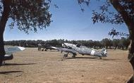 Asisbiz Messerschmitt Bf 109G4R6 RA 150Gr365Sqn White 365 1 WNr 19566 Sicily Italy 1943 02