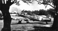 Asisbiz Messerschmitt Bf 109G6Trop RA 150Gr363Sqn White 363 7 Ugo Drago WNr 18421 Sicily Italy June 1943 01