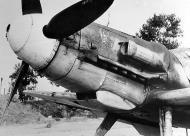 Asisbiz Messerschmitt Bf 109G6Trop RA 3 Gruppo Stkz SO+SS WNr 18065 Comiso 10th Jul 1943 02