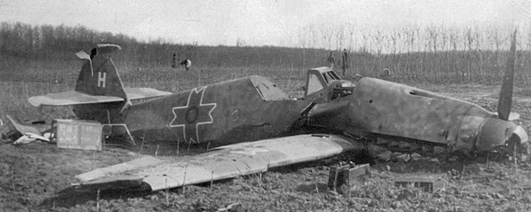 Messerschmitt Bf 109G2 RRAF 7FG Yellow 1 White H Romania 1942 01