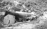 Asisbiz Bristol Blenheim IF RAF 604Sqn NGR L1517 sd by 11.(N)JG2 Johannes Steinhoff Wassenaar Holland 10th May 1940 01