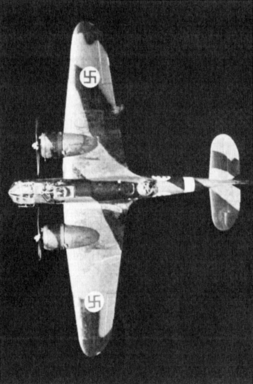 FAF LeLv42 BL129 aerial photo showing the upper camouflage pattern 1943 01