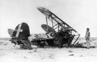 Asisbiz Fiat CR 42 Falco abandoned wreck North Africa 1942 01